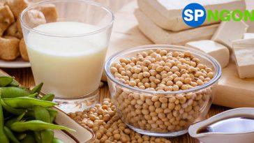 Top 10 Máy Làm Sữa Đậu Nành bán chạy nhất